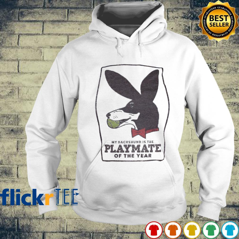 My Dachshund is the playmate of the year s hoodie