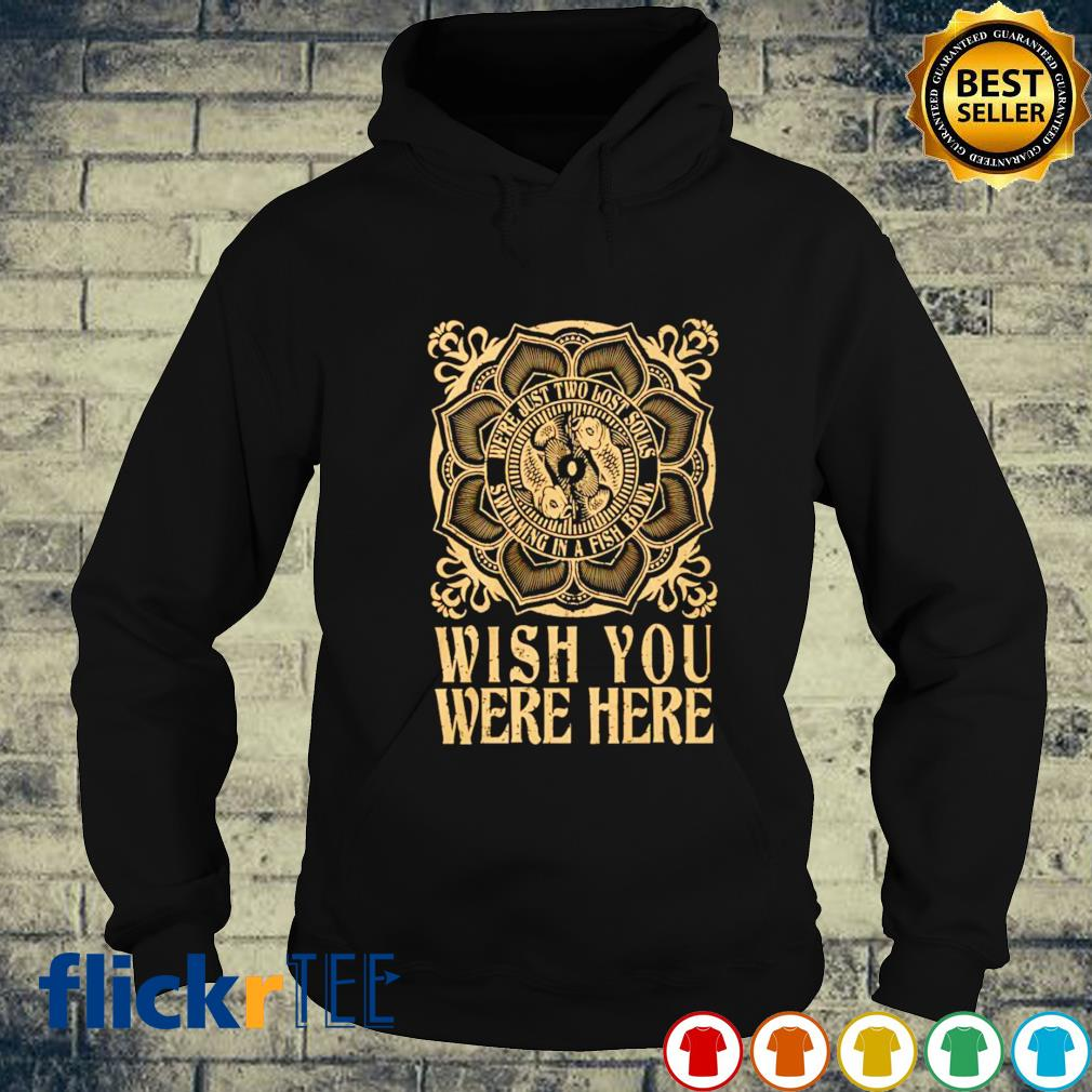 Wish you were here we're just two lost souls hoodie