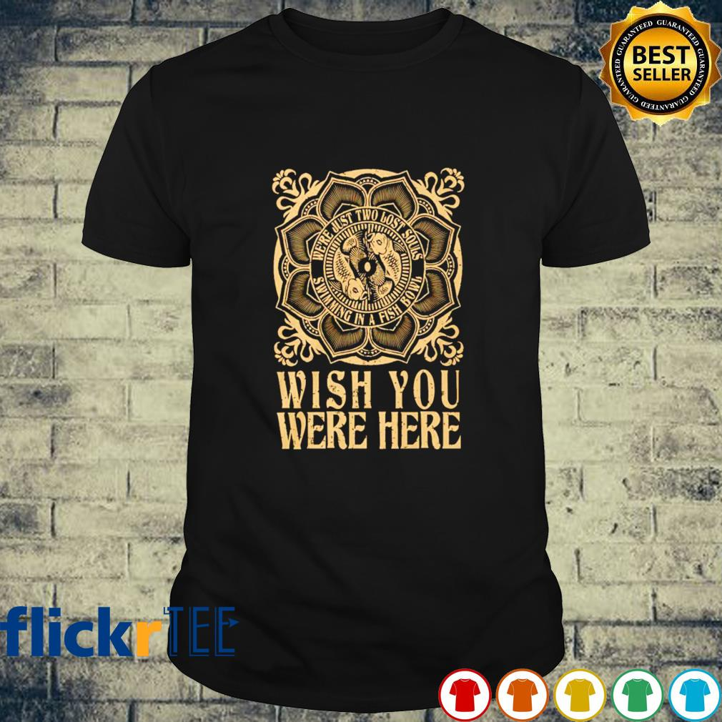 Wish you were here we're just two lost souls shirt