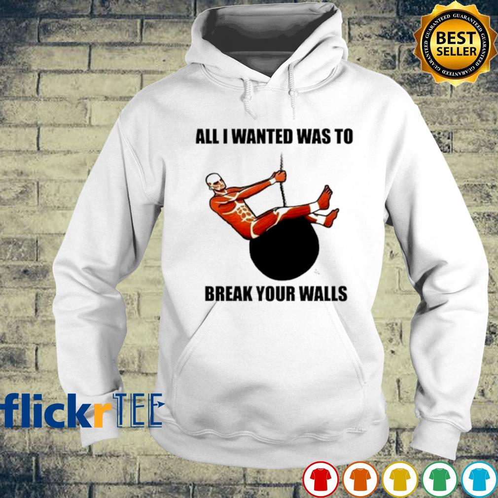 All I wanted was to break your walls s hoodie