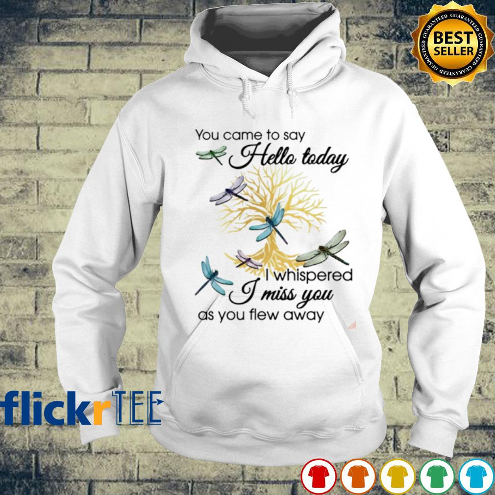 Dragonfly you came to say hello today I whispered I miss you as you flew away s hoodie